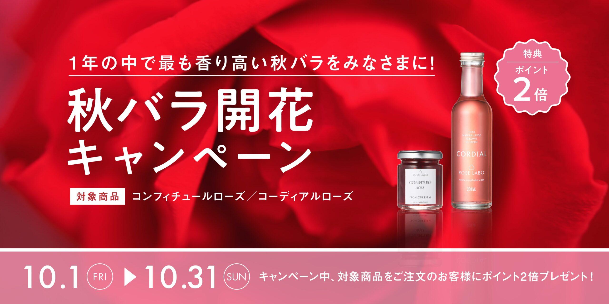 本日5/1(土)より、おうち生活応援キャンペーン実施いたします!